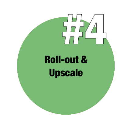 4 Schritte zur Innovation - Roll-out & Upscale